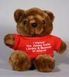 C2286 - Teddy Bear