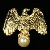 Eagle Pearl Pin